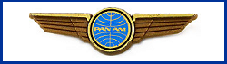 Pan Am Wings